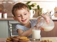 Süt ve Sütlü Gıdaların Kemik ve Diş Gelişimi Üzerine Etkisi